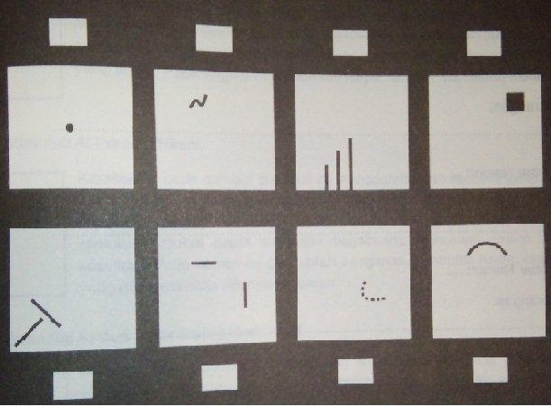 Contoh Soal Psikotes Kerja dan Kunci Jawaban tes wartegg