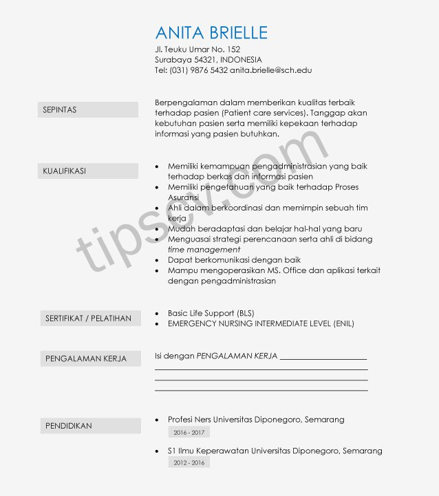 Download Contoh Cv Perawat Doc Pdf Template Cv Kosong