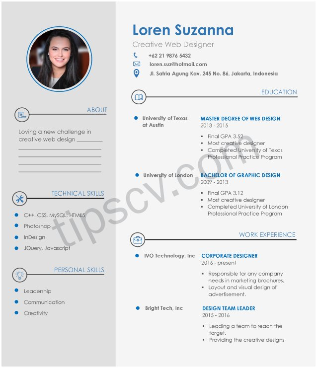 Download Contoh Cv Profesional Doc Pdf Template Cv Kosong