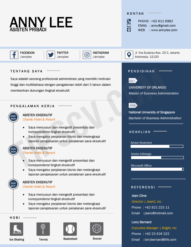 Format CV Kosong Asisten Pribadi (Download template CV format doc word)